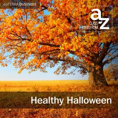 Class Ideas from A-Z: Healthy Halloween. Holiday-themed classes are a fun change to your regular classes. See a few ideas at the Business Blog: http://doterrabusinessblog.com/class-ideas-from-a-z-healthy-halloween/