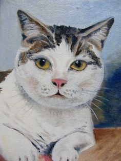 One of my cats oil painting