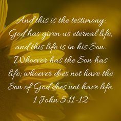 1 John And this is the testimony: God has given us eternal life, and this life is in his Son. whoever does not have the Son of God does not have life. Prayers For My Daughter, Son Of God, Savior, Jesus Christ, Scriptures, Bible Verses, John 5, Scripture Cards, Word Pictures