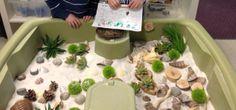 Our hermit crab terrarium!