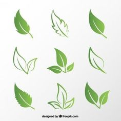naturaleza freevector freepik verdes vector hojas verde free hoja Hojas verdes Free VectorYou can find Naturaleza and more on our website Photoshop World, Free Photoshop, Leaf Images, Plant Images, Logo Nature, Vector Verde, Tea Logo, Leaf Outline, Leaf Clipart