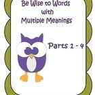 Be Wise to Words with Everyday Meanings is an instructional workbook for teaching students about confusing words and meaning of many common English...