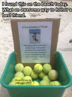 What a great way to commemorate your dog and spread love. :) The world needs more tennis balls.