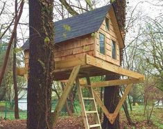 San Pedro treehouse - plans to build in one tree or free standing One Tree, Tree Deck, Simple Tree House, San Pedro, Tree House Plans, Tree House Designs, Two Trees, Covered Pergola, Deck Plans