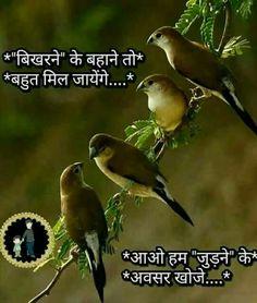 Morning Prayer Quotes, Morning Greetings Quotes, Morning Prayers, Good Morning Quotes, Urdu Quotes Islamic, Hindi Quotes, Quotations, Qoutes, Sayari Hindi