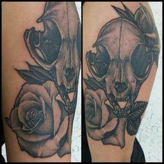 Cat skull and roses #cat #skull #roses