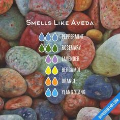 Smells Like Aveda with multiple oils — Essential Oil Diffuser Blend - with multiple oils Essential Oil Diffuser Blends, Doterra Essential Oils, Natural Essential Oils, Young Living Essential Oils, Bergamot Essential Oil, Doterra Diffuser, Yl Oils, Do It Yourself Food, Diffuser
