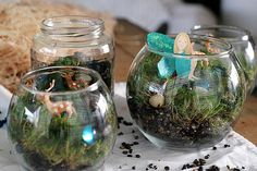 woodland fairy party (maybe use Dollar Store vases/jars)