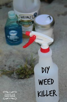 Check out this recipe for diy weed killer! A more natural way to get rid of those pesky weeds!