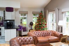 The Noble Fir at Christmas