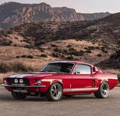Pin By David On Stanger Mustang Cars Ford Classic Cars Muscle Cars Mustang Cobra, Mustang Fastback, Shelby Mustang, Ford Shelby, Classic Mustang, Ford Classic Cars, Muscle Cars Vintage, Vintage Cars, Lamborghini