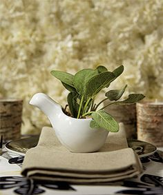 Give each gift an herb or veggie plant in a cute holder as a wedding favor