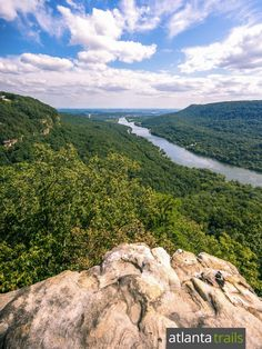 Cumberland Trail in Chattanooga: hike to incredible views from Signal Mountain to Edwards Point Signal Mountain Tennessee, Tennessee River, Appalachian Mountains, Beautiful Forest, Tennessee Volunteers, Wilderness, Trail, Waterfall, Scenery