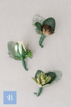 The Stella Boutonniere Rosebud features a cream rosebud with greenery, a burgundy succulent, or a green sedum. Premium silk florals. All boutonnieres from Something Borrowed Blooms are designed with a safety pin on the back, used to easily pin to fabric. Cream Roses, White Roses, Groomsmen Boutonniere, Boutonnieres, Classic Candles, Something Borrowed, Groom Style, Bridesmaid Bouquet, Bridal