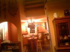 kitchen ghost - Figures and faces - Gallery - Ghost Mysteries Discussion Forums
