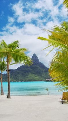Beautiful Fauna Flora -  Bora Bora Beach, Tahiti