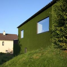 House renovation in Saignelégier  by Dubail Begert Architects Artificial grass blankets one wall of this renovated house in Switzerland by local studio Dubail Begert Architects