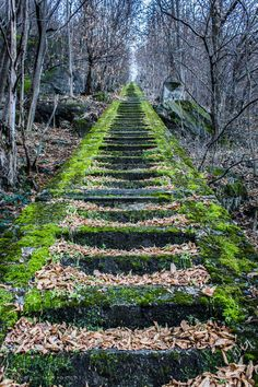 Imagine hiking up these in your Classic Z's. Stairway to Heaven - Chiavenna - Sondrio - Italy Stairway To Heaven, The Places Youll Go, Places To See, Siena Toscana, Beautiful World, Beautiful Places, Beautiful Forest, All Nature, Stairways