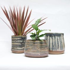 Landscape+designer,+Dustin+Gimbel,+continues+to+amaze+and+delight+us+with+his+pottery.+In+addition+to+the+Point+Pot,+Dustin+is+making+these+handmade+ringed+planters+in+small+batches+available+only+in+limited+runs.+Due+to+the+handmade+quality,+each+piece+is+one-of-a-kind+and+when+it's+gone,+it's+gone. Each+planter+is+beautifully+glazed+inside+making+it+perfect+as+a+cache+pot,+small+fountain+basin+or+even+to+hold+food.