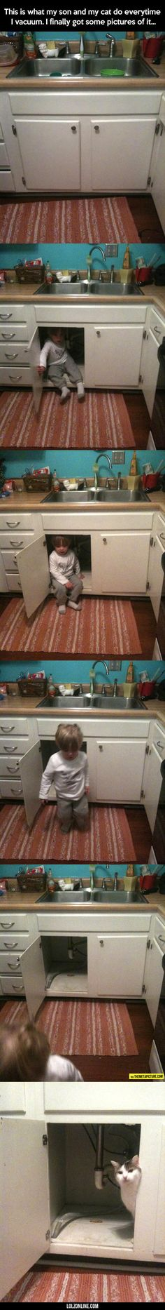 Scared Of The Vacuum#funny #lol #lolzonline