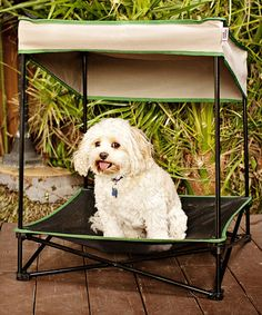 Look what I found on #zulily! Tan Small Instant Pet Shade #zulilyfinds