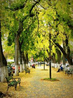 Íme Európa legromantikusabb sétánya! Marosvásárhely-Vársétány Outdoor Furniture, Outdoor Decor, Sidewalk, Marvel, Park, Home Decor, Decoration Home, Room Decor, Side Walkway