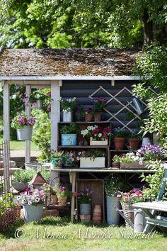 Äntligen sommarblommor | blomsterverkstad | Sköna Hem