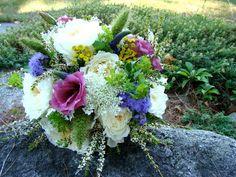 Vermont Wild Flowers