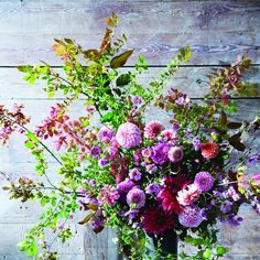 Autumnal euonymus branches, with leaves tinged red and orange, are complemented by dahlias in shades of pink