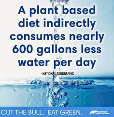 Go Plant Based. Go Green, go vegan. Save the animals. Change. Evolve. Do the right thing, or at least try. #vegan