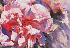 Ann Pember - Rose Glow