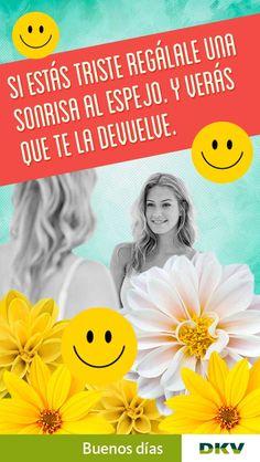 DKV Seguros (ES) (@DKVSeguros)   Twitter