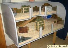 meerschweinchenberatung.at: Beispiel 5 für Eigenbauten