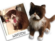 Order a stuffed animal that looks just like your pet