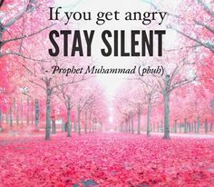 The last of our Prophet Muhammad (Sallallahu alaihi wa sallam) not only a well-intentioned advice, no who is this also complies see that this should be a basic law for become peace. ♥ Unser letzter Prophet Muhammad (Mögen Allahs Segen und Frieden auf ihm sein)Nicht nur ein gut gemeinter Rat, nein wer diesen auch befolgt wird sehen das es ein Grundgesetzt sein sollte um Frieden zu schaffen. #Sunnah