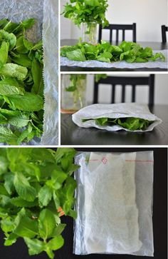 Ways to preserve and use herbs