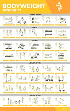 Fitness Workouts, Weight Training Workouts, Fitness Workout For Women, At Home Workouts, Trx Workouts For Women, Body Weight Training, Gym Workout Chart, Band Workout, Gym Workout Tips