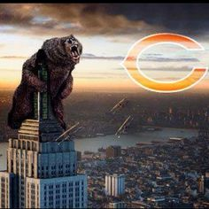 Da Bears Chicago Style!
