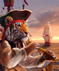 Pirate Manymal