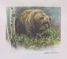 Robert Bateman gallery at Art Country Canada with paintings, canvas, giclee, limited edition prints and Black Bear Cub, Z Arts, Mountain Art, Bear Art, Animal Sketches, Canadian Artists, Batman, Wildlife Art, Woodland Animals