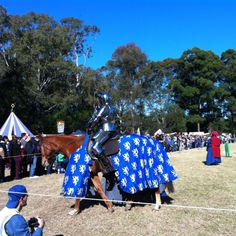 Jousting horse and jouster at Winterfest Parramatta 2012.