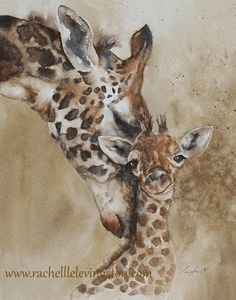 for him giraffe painting watercolour PRINT art giraffe African wall hanging african wall art fathers day gift 11x14 Watercolor painting by rachellelevingston on Etsy https://www.etsy.com/listing/189119126/for-him-giraffe-painting-watercolour