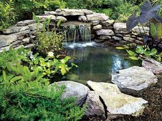 Garden Pond Waterfall : Backyard Pond And Waterfall Ideas. Backyard pond and waterfall ideas. outdoor ponds with waterfalls,waterfall for small garden pond Garden Pond Design, Backyard Garden Landscape, Pond Landscaping, Landscaping With Rocks, Landscape Design, Rooftop Garden, Small Backyard Ponds, Backyard Water Feature, Backyard Waterfalls