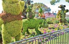 Winnie the Pooh and friends topiary, united kingdom, epcot 2014 international flower and garden festival, walt disney world