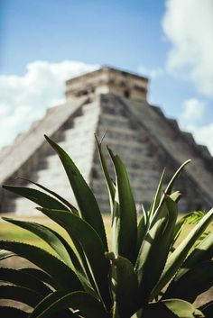 Tips for Chichen Itza and the Best Mayan Ruins on Yucatan Peninsula - Bobo and ChiChi Mexico Vacation Spots, Mexico Travel, Places To Travel, Places To Go, Travel Destinations, World Photography, Travel Photography, Photography Ideas, Chichen Itza Mexico
