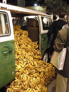 """Banana affaire, Art Basel 2011 Miami.    """"Pues esta ética individual no se hizo presente porque en el momento en que la mujer se comió los plátanos el artista llamó a seguridad, detuvieron a la mujer por """"robar"""" parte de una obra de arte, le cobraron en 20 dólares cada banana y la multaron. La mujer discutió que era injusto, que las bananas no valían eso y seguridad, esgrimido en curador, le espetó que esas bananas y la combi dentro de la feria eran una obra de arte. Paulo Nazareth sin…"""