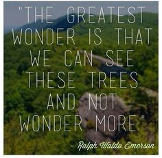"""The greatest wonder is that we can see these trees and not wonder more."" - Ralph Waldo Emerson"