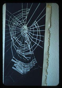 """Lyonel Feininger, [""""Spider-Web,"""" photograph by unidentified artist], 1940s-1950s, Harvard Art Museums/Busch-Reisinger Museum."""