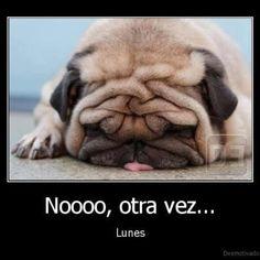 Nooo, otra vez...lunes