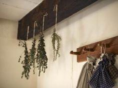 Jak využívat nejznámější bylinky | rady Herbs Image, Preserve Fresh Herbs, Organic Living, Kitchen Witch, Growing Herbs, Green Plants, Kraut, Vegetable Garden, Herb Garden